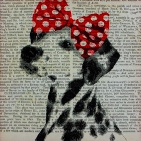 slika dalmatinec mala