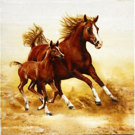 konji slike