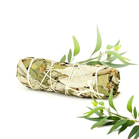 kadilo beli žajbelj s evkaliptusom, energijsko čiščenje prostora